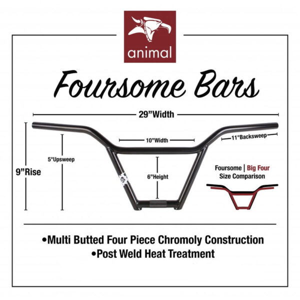 animal-foursome-bar-detail_1484390711_739
