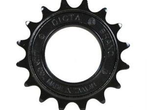 roue-libre-salt